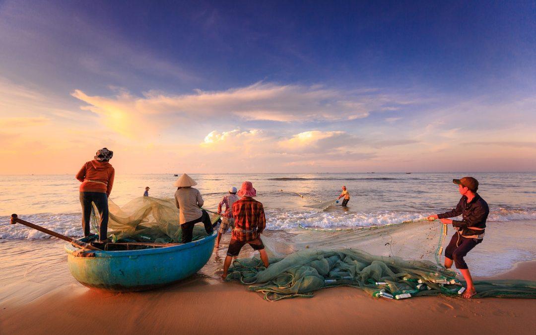 Settore ittico, contributo a fondo perduto dalla Regione Lazio