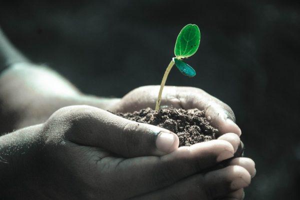 Riparte Fondo Futuro, il bando per il microcredito della Regione Lazio